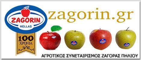 ΑΓΡΟΤΙΚΟΣ ΣΥΝΕΤΑΙΡΙΣΜΟΣ ΖΑΓΟΡΑΣ ΠΗΛΙΟΥ